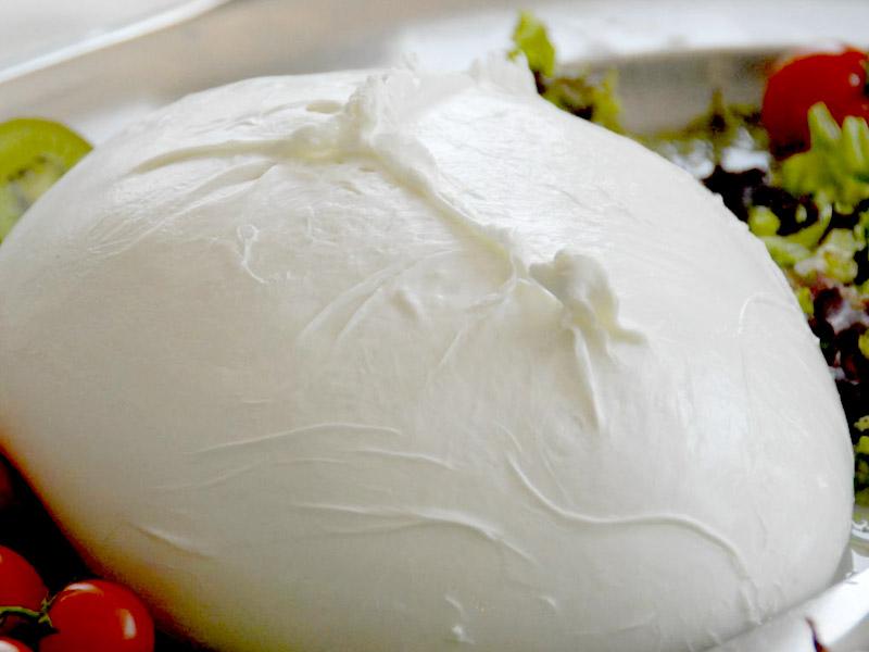 mozzarella-bufala-2