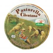 formaggio di pecora pastorella 1 Gusto Sele