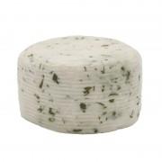 formaggio di pecora fresco con rucola gusto sele